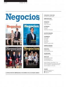 NEGOCIOS_diciembre_enero_2015_Issue_Pagina_10